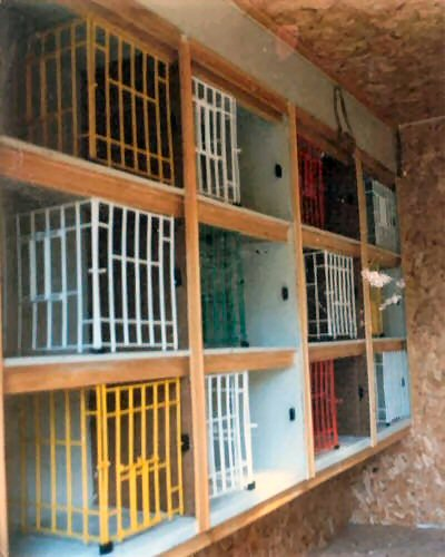 Breeding Boxes For Pigeons Pigeon Nest Boxes